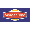 LOGO_MorgenLand / EgeSun GmbH