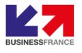LOGO_BUSINESS FRANCE
