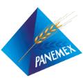 LOGO_PANEMEX