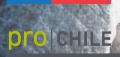LOGO_Dirección General de Relaciones Económicas Internacionales DIRECON