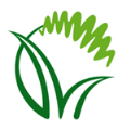 LOGO_GREEN NET FIRST THAI CERTIFIED ORGANIC FAIRTRADE