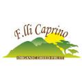 LOGO_F.lli Caprino srl