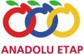 LOGO_AEP Anadolu Etap Penkon