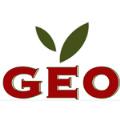 LOGO_GEO - BAVICCHI