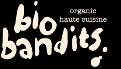 LOGO_BioBandits B.V.