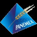LOGO_PANEMEX SAS