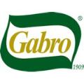 LOGO_GABRO