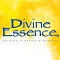 LOGO_Union Nature - Divine Essence Essential Oils