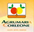 LOGO_Agrumaria Corleone SPA
