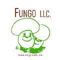 LOGO_Fungo.shpk