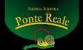 LOGO_PONTE REALE S.R.L.