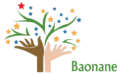 LOGO_Baonane SARL The source of Baobab