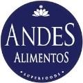 LOGO_Andes Alimentos