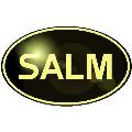 LOGO_Salm, O. & Co. GmbH
