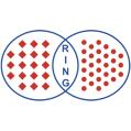 LOGO_Ring Maschinenbau GmbH