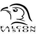LOGO_Falcon-Vision ZRT