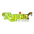 LOGO_Napier Limited