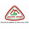 LOGO_Monte Sport srl