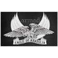 LOGO_Armed Guns
