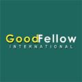 LOGO_Goodfellow International