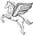 LOGO_Pegasus Trade