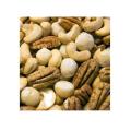 LOGO_Pecan macadamia brazil nuts cashew pine