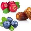 LOGO_Fruit Syrup