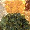 LOGO_Samen und Saaten aus kontrolliert biologischem Anbau