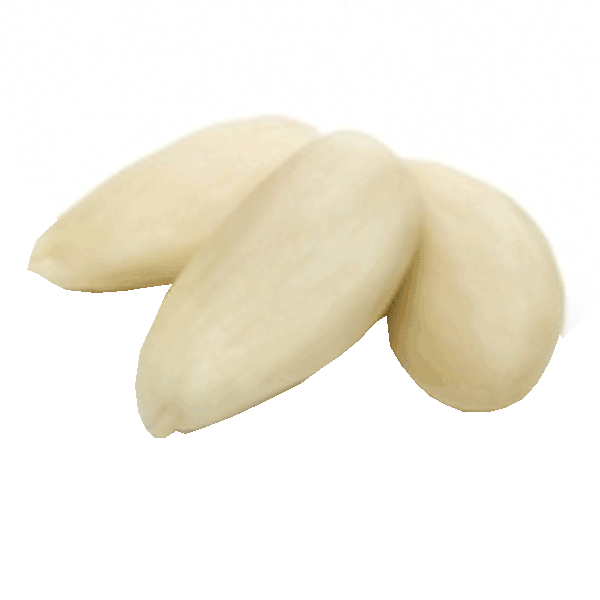 LOGO_Blanched almonds