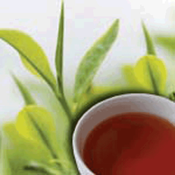 LOGO_Organic & Fair Trade Black Tea