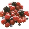 LOGO_Deep-frozen Produce (IQF)