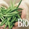 LOGO_Bio Organic