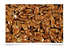 LOGO_Organic Brown Flax Seeds