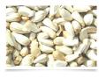 LOGO_Organic Safflower seeds