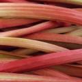 LOGO_Obst und Gemüse, frisch