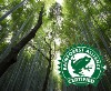 LOGO_Rainforest NFC's, Concentrates & Purees