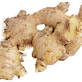 LOGO_Spice Oleoresin and Organic essential Oils