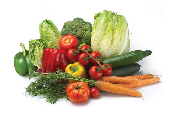 LOGO_Biologische Gemüse