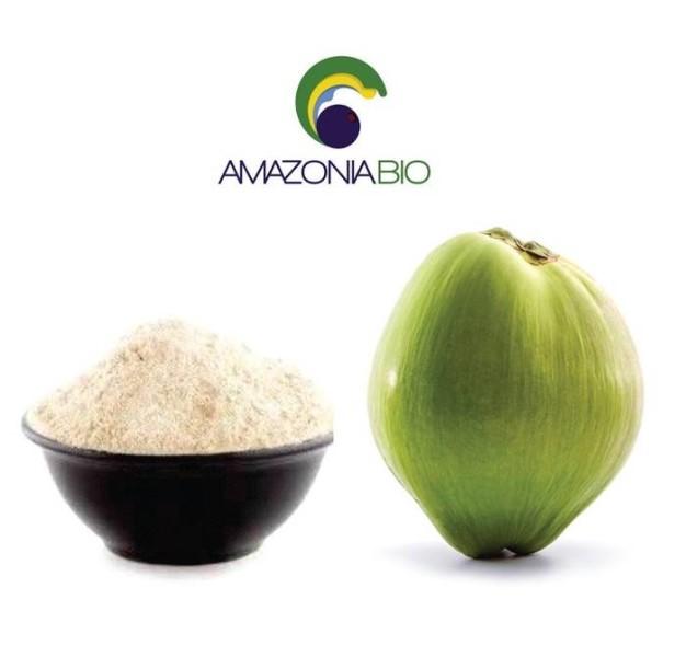 LOGO_Bio Kokosnusswasser als Pulver (gefriergetrocknet)