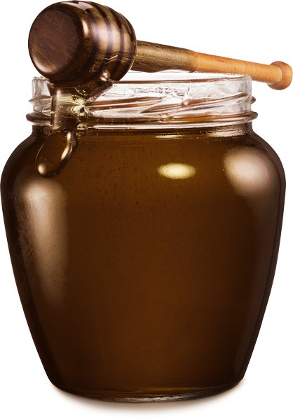 LOGO_Coconut Syrup