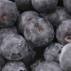 LOGO_Blueberry