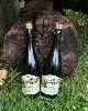 LOGO_Cidre Brut/Demi-Sec (cider)