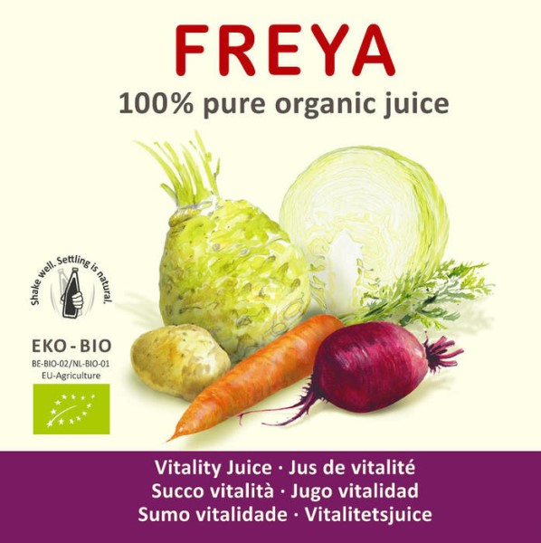 LOGO_Vitalität Gemüse-Direktsaft