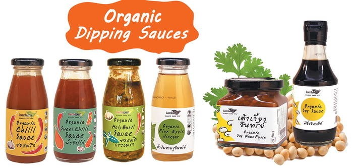 LOGO_Organic Dipping Sauces