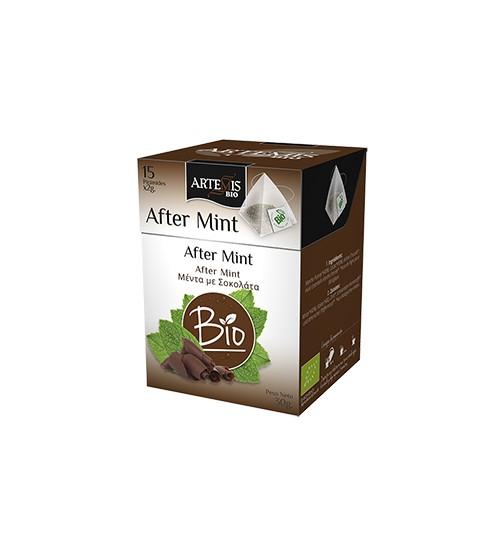 LOGO_After Mint