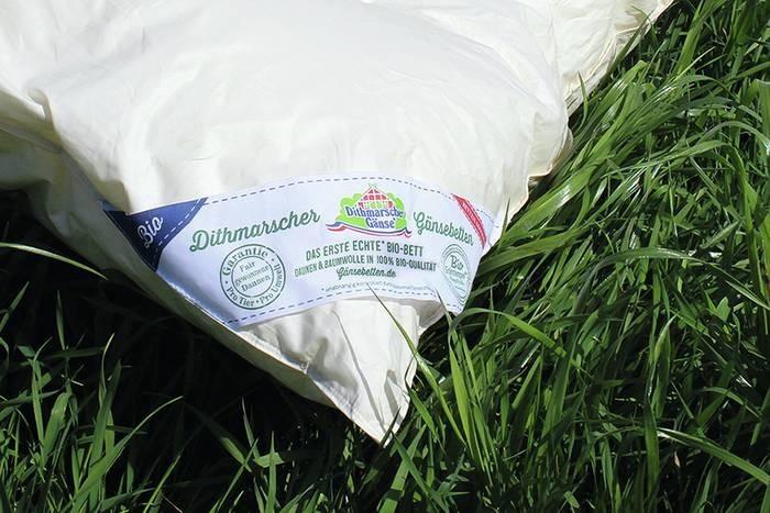 LOGO_Box-quilting organic down blanket 100 x 135 cm, 90% organic goose down - 10% organic feathers