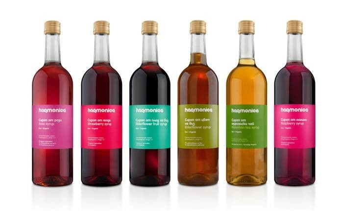 LOGO_Artisanal Fruits and herbal syrups