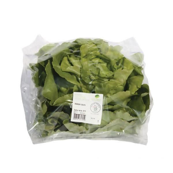 LOGO_Organic leafy vegetables