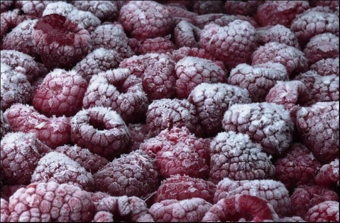 LOGO_Bio tiefgefrorene Früchte