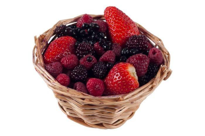 LOGO_Bio Fruchtpuree